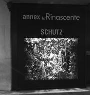 Schutz Annex La Rinascente